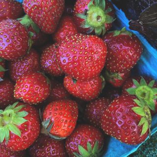 It's a 'berry good time of the year! What's your favorite way to enjoy this summer staple? Let us know in the comments below. 👇   Join in the goodness & place your order for week 2.   Order by 11:59pm today for Tuesday shares!   Visit cityfresh.org to order today! 🍓  #cityfresh #csa #eatlocal #shoplocal