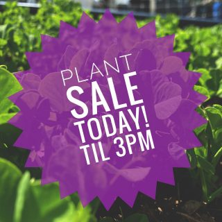 Stop out at George Jones Farm for our plant sale fundraiser! Saturday, May 1, 10-3. 44333 St. Rt. 511, Oberlin