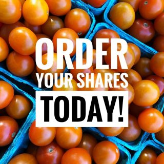 Just 4 days left to order your shares for the first week of the season! 🍅   Visit cityfresh.org to order today. The veggies can't wait! 🍓  #cityfresh #csa #community #localbusiness #localagriculture