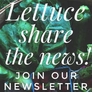 Make sure you get City Fresh news and offers straight to your inbox! Subscribe now (link in bio)!