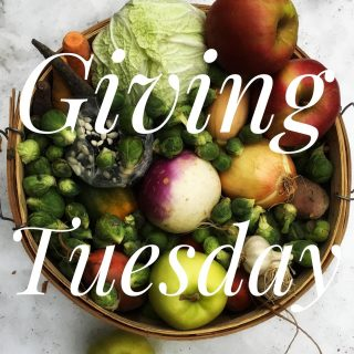 Celebrate this snowy #givingtuesday with City Fresh! Help us in the fight for food justice on this global day of giving. A donation of just $8 subsidizes a low income holiday share. (Link in bio)
