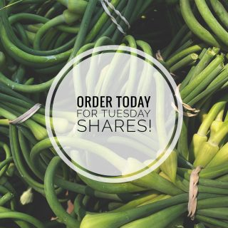 Today is a great day to order your City Fresh shares! 🥦🥕🥬🍅  Order by 11:59pm today for pick up at one of our Tuesday Fresh Stop locations.   Visit cityfresh.org to order today! 🍓  #cityfresh #csa #eatlocal #shoplocal