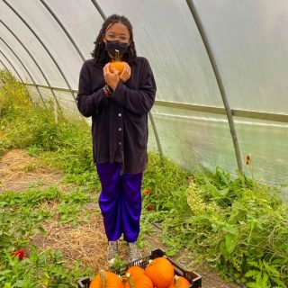 The pie pumpkins in the single shares this week are truly precious! We can't decide whether they'd make a better porch decoration or delicious fall meal/dessert... what do you think?   #cityfresh #csa #eatlocal #shoplocal