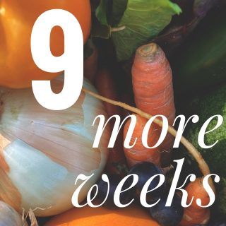 There are still 9 more weeks in our regular season! That's 9 more weeks of family and single shares at all 14 of our locations! You can join at any time so feel free to order 1 share or 9 at cityfresh.org. 🍓  Remember - you have until 11:59 tonight (Saturday) to place your order in time for Tuesday shares.   - #cityfresh #csa #eatlocal #shoplocal