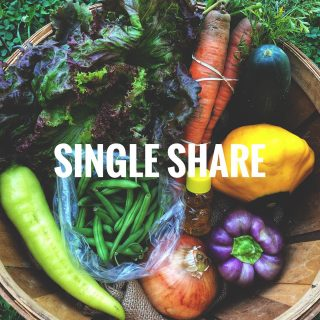 Did you know we offer 2 share sizes?   Single shares feed 1-2 people and include 7-9 items. Family shares feed 3-5 people and include 10-12 items. All shares come pre-packaged.  No matter the size of your household, we have a share for you!   Get started today at cityfresh.org. The season starts June 15th! 🍓   #cityfresh #csa #community #localbusiness #localagriculture