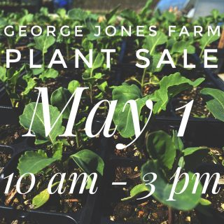 Come to the George Jones Farm Plant Sale fundraiser this Saturday! Veggie starts, seeds, pre-fab raised beds, and more!  44333 St. Rt. 511, Oberlin, OH