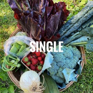 This week's shares are so darn beautiful we can't even take it! Did you know that Single shares feed 1-2 people & contain 7-9 items, while Family shares can feed 3-5 people & contain 10-12 items. No matter your household size, we have a share for you!   Join in on the goodness & sign up at cityfresh.org today. 🍓  #cityfresh #csa #eatlocal #shoplocal
