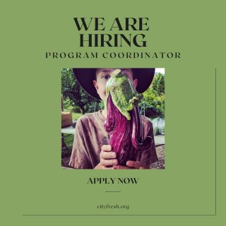 Are you passionate about building an equitable and sustainable food system? We are hiring for two positions, City Fresh Program Coordinator and Farmer Liaison, with an immediate start date. Interested candidates should send resumes to annakiss@cityfresh.org. 🍓  #cityfresh #csa #eatlocal #shoplocal #werehiring #community