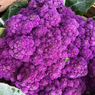 Can you even believe this cauliflower? It's purple, it tastes divine, & it's lookin' fine!   Did you know purple and blue fruits & vegetables support vision health, lower LDL cholesterol, boost your immunity, support healthy digestion, improve mineral absorption, fight inflammation, and act as free radicals in the body? They aren't kidding when they say you should eat the rainbow. 💜  Have you ordered for week 4 yet? Visit cityfresh.org to get started today! 🍓  #cityfresh #csa #eatlocal #shoplocal