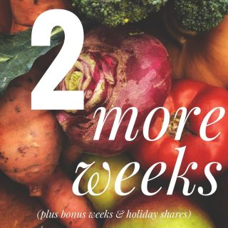 READ THE FINE PRINT!   We have 2 more weeks of our regular season at all 14 Fresh Stops, but 4 more weeks of veggie goodness after that at Coventry, Lakewood, and Oberlin for our bonus and holiday shares!  Order today and pick up next week for the second to last week of the season, or order ahead for our bonus weeks, all at cityfresh.org 🍓  #cityfresh #csa #eatlical #shoplocal
