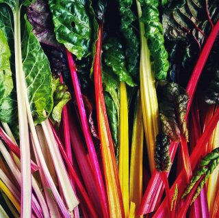 Kicking off Pride Month with some Bright Lights Swiss Chard for ya, aka Rainbow Chard! 🤩 This chard is beautiful and vibrant with its variety of colors and is edible from leaf tip to stem base. Did you also know that it's jam packed with nutrients? Add some Swiss Chard to your diet and you won't regret it!   Happy Pride Month all! 🌈