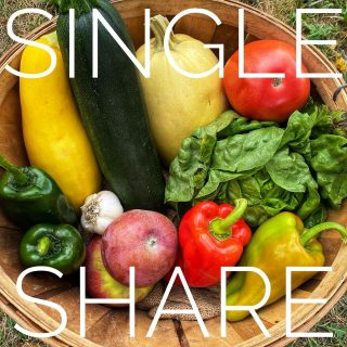Single share ➡️ Family share. There's some serious ✨magic✨ happening in these week 14 veggies! Join us for the fun to come during week 15 at cityfresh.org 🍓 #cityfresh #csa #eatlocal #shoplocal