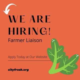 We are hiring a Farmer Liaison! This person will operate our City Fresh truck & ensure produce shares are making it to their Fresh Stop locations.   Apply today at city fresh.org & join our efforts to change the world one vegetable at a time! 🍅