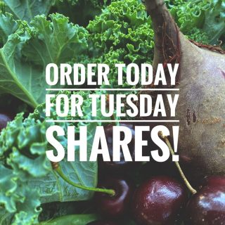 Can you believe we are on to week 5? This summer is flying by! Don't miss out on the mid-summer abundance. Place your order by 11:59pm today in time for pick up at one of our Tuesday Fresh Stop locations.   Visit cityfresh.org to order today. 🍓  #cityfresh #csa #eatlocal #shoplocal