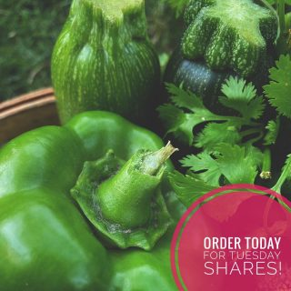 Have you been itching to sign up for a single or family share, but keep forgetting? Don't worry, there's still time!   Visit cityfresh.org and order by 11:59pm today to pick up shares on Tuesday at one of our 5 Fresh Stop locations. 🍓  #cityfresh #csa #eatlocal #shoplocal
