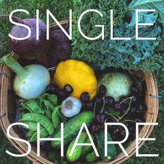Week 4's Single Share ➡️ Family Share looking leafy green and tasty. Plus 🍒!!!   What will week 5 bring? Order at cityfresh.org to find out! 🍓   #cityfresh #csa #eatlocal #shoplocal