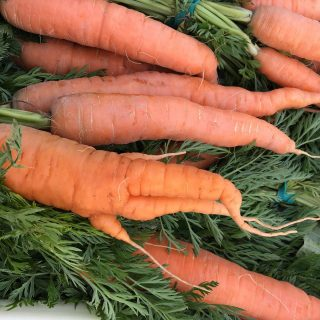 It's a CARROT-tastrophe! Jerry Yoder's carrot crop took a hit so we've replaced carrots with corn this week.