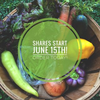 Today is the perfect day to order your City Fresh shares!  Visit cityfresh.org to choose from a single or family share size & get started today! The veggies can't wait. 🥦🥕🥬🍅