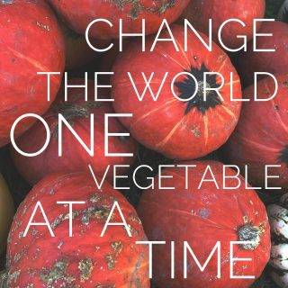 The start of the season is just 5 weeks away! 👏 We have single and family produce share sizes available. Order week-to-week or all weeks in advance! Sign up anytime.   Visit cityfresh.org to order today and join our movement to change the world one vegetable at a time. 🍅🥦🥕