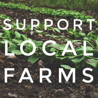 Your end-of-year donation goes toward values you can trust City Fresh to embody, year end, year out. Supporting local farms and small farmers helps keep dollars in our community and focuses energy on techniques that restore our environment. Build resilience with your gift. Link in bio.