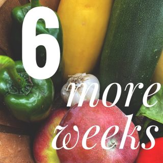 There are 6 weeks left in our regular season! It's never too late to join - order by 11:59PM tonight to pick up your fresh, seasonal, local veggies at any of our 14 Fresh Stops this week.   Order at cityfresh.org 🍓  #cityfresh #csa #eatlocal #shoplocal